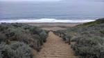 Sand Ladder